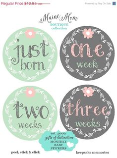 ON SALE GIFT Monthly Baby Girl Stickers Month Milestone Bodysuit Stickers Mint Gray Pink Flower Mod Includes Just Born 1 2 3 week stickers!! by MaineMomBoutique on Etsy https://www.etsy.com/listing/233525338/on-sale-gift-monthly-baby-girl-stickers