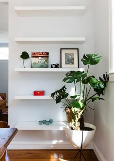 Pot It - Inside The Cool-Girl Apartment Of Lisa Says Gah's Founder - Photos