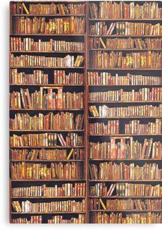 Bibliophile by anni103