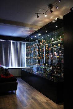 A display case presents the inner-self of the creator. With a look at the display case, you can know the person inside. There are DIY display case ideas. Wooden Display Cases, Lego Display, Glass Display Case, Wooden Shelves, Display Ideas, Glass Shelves, Diy Interior, Interior Design, Action Figure Display Case