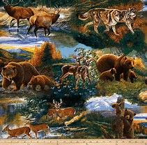 Image result for Wildlife Animals Collage