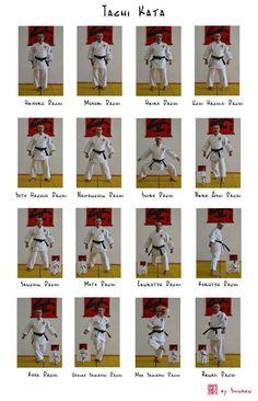 Shotokan Karate Kata, Karate Dojo, Goju Ryu, Art Rules, Aikido, Judo, Martial Arts, Japan, Kite