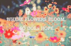 There is a correlation between flowers and hope. :)