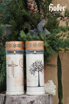 Produktübersicht Premium Plus Forever Young, Pillar Candles, Xmas, Outdoor, Candles, Repurpose, Plants, Nice Asses, Outdoors