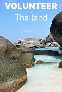 Find free and low-cost volunteering opportunities in Thailand. Find the latest and best ways to start volunteering and making a difference. Volunteer Programs, Volunteer Work, Volunteer Abroad, Volunteer Gifts, Volunteer Appreciation, Thailand Travel, Asia Travel, Phuket, Work Abroad