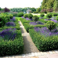 Parterre-lakes-in-Berkshire-by-Jo-Alderson-Phillips