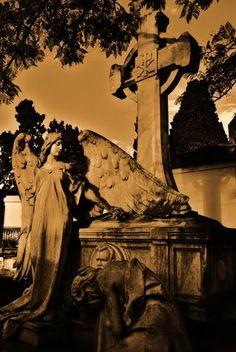 Paysandú cementery