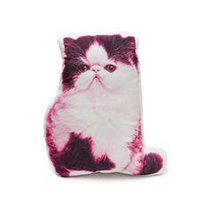 Persian Cat pillow Persian cushion Persian cat cat lover
