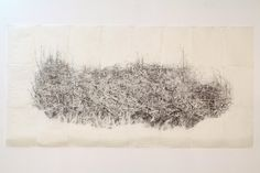 Afton Love | Pile graphite on paper, beeswax