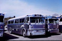 taken at Calgary, Alberta Bus Art, Hydrogen Fuel, Bus Terminal, Bus Coach, Bus Station, Bus Stop, Busses, Big Trucks, Calgary