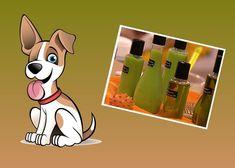 Veja como criar um shampoo bem bacana para o seu animalzinho de estimação! Que tal criar um cosmétic
