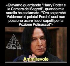 Harry Potter Tumblr, Harry Potter Anime, Harry Potter Film, Harry Potter Wattpad, Harry Potter Dolls, Harry Potter Fandom, Harry Potter Hogwarts, Harry Potter Memes, Harry Porter