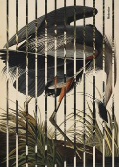 tribute to black-modernizor Mixed Media, Collage, Nice, World, Modern, Artwork, Black, Collages, Trendy Tree