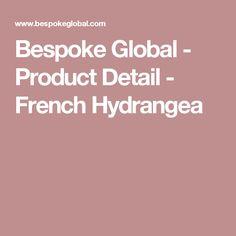 Bespoke Global - Product Detail - French Hydrangea