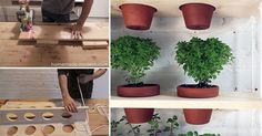Save space and plant your herbs in Hanging Garden! Save space and plant your herbs in Hanging Garden Easy Garden, Herb Garden, Vegetable Garden, Garden Tools, Garden Ideas, Hydroponic Gardening, Container Gardening, Urban Gardening, Planting Vegetables