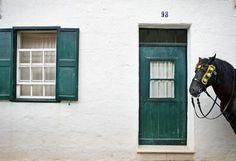 Escapada de ensueño - TELVA  Menorca.