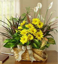 Dish Garden with Fresh Cut Flowers Send your warmest regards with an elegant dish garden that combines the fragrance of a fresh bouquet with the lasting beauty of indoor plants.