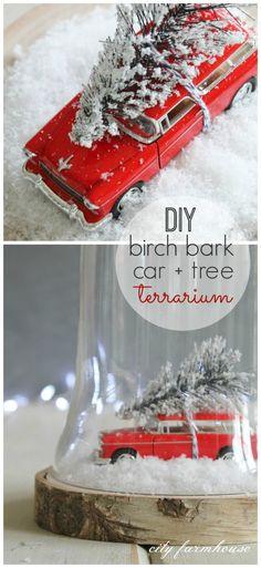 Beautiful DIY Birch Bark Car + Tree Terrarium tutorial from @cityfarmhouse1