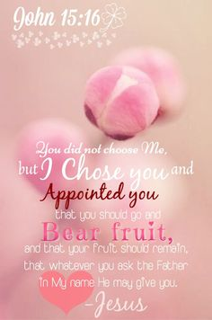 John You did not choose me but I chose you and appointed you that you should bear fruit, and that your fruit should remain that whatever you ask the Father in My name He may give you. Bible Scriptures, Bible Quotes, Scripture Verses, Jesus Quotes, Faith Quotes, John 15 16, Soli Deo Gloria, Women Of Faith, Favorite Bible Verses