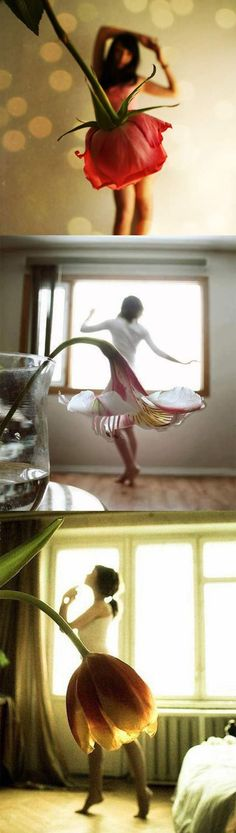 Three forced perspective photos.