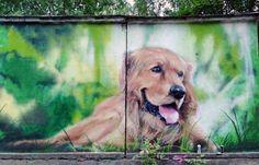 Graffiti art dog  cans art street art