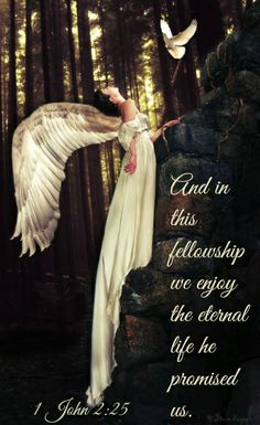 1 John 2:25 And in this fellowship we enjoy the eternal life he promised us.