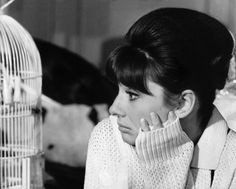 Portrait in 1962 of Audrey Hepburn bending to see about a little bird in the film PARIS WHEN IT SIZZLES