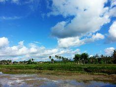Nature of Bali