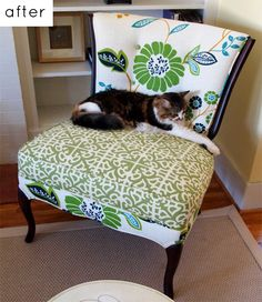 Things you need to Know Before you Reupholster