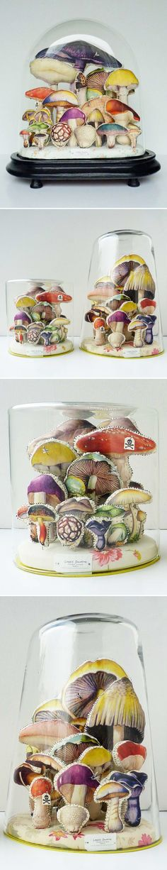 lyndiedourthe_mushrooms.jpg 584×3,034 pixels