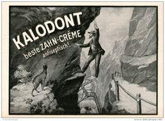 Original-Werbung/Inserat/ Anzeige 1913 - KALODONT ZAHNCREME - ca. 180 x 130 mm