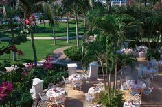 The Fairmont Orchid Hawaii - Kohala Coast, Big Island, Hawaii - Luxury Hotel Vacation from Classic Vacations