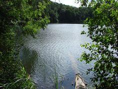 Na ścieżkach Wielkopolskiego Parku Narodowego