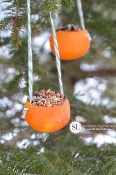 Orange Birdseed Ornaments | Homemade Citrus Bird Feeders - bystephanielynn