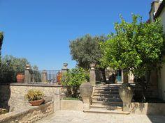olive estate