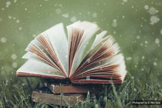 Magical Books II by Niko Vass on 500px