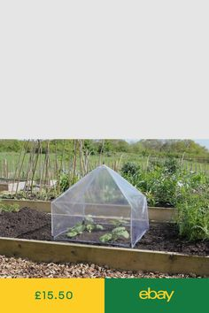 Learn How to Extend Your Gardening Season Up To 4 Months Longer For on grandio greenhouses, custom greenhouses, farmtek greenhouses, alaska greenhouses, low-priced greenhouses, residential greenhouses, timber greenhouses, gothic arch greenhouses,