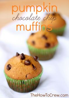 Pumpkin Chocolate Chip Muffins from TheHowToCrew.com.  The perfect fall treat! #recipes #muffins #pumpkin