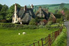 arabeskak:  Thatched cottages, Chantmarle