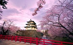Our Japan Cherry Blossoms Tours itineraries will take you to the best sakura spots. Check out our Japan Sakura Tours available from February to April! Aomori, Places To Travel, Places To See, Time Travel, Beautiful World, Beautiful Places, Beautiful Live, Beautiful Scenery, Amazing Places