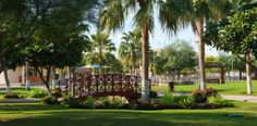 Explore the green side of Qatar through its lush parks.