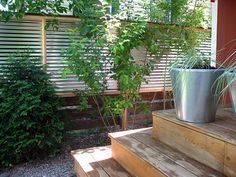 corrugated steel fence...i really really want this as our privacy fence!