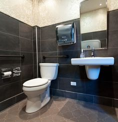 ADA Compliant Bathroom Design, Pictures, Remodel, Decor and Ideas -
