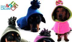 Pets & Dicas: Moldes de roupas para cachorro para imprimir