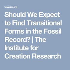 Should We Expect to Find Transitional Forms in the Fossil Record? | The Institute for Creation Research
