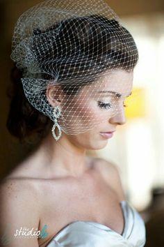 Net Birdcage Bridal Veil