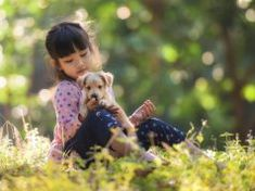 egg to every homemade pregnant dog food meal that you make. Dairy products like cheeses and yogurt may Make Dog Food, Best Dog Food, Best Puppies, Toy Puppies, Dog Wheelchair, Pregnant Dog, Dog Grooming Business, Large Dog Breeds, Animaux
