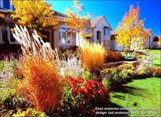 Image result for rain garden ideas for minnesota