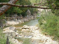 Basca Mare River, 2012