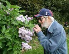 Sensory garden for dementia world Farm Gardens, Outdoor Gardens, Depression In The Elderly, Creative Arts Therapy, Therapy Ideas, Sensory Garden, Dementia Care, Giving Back, Horticulture